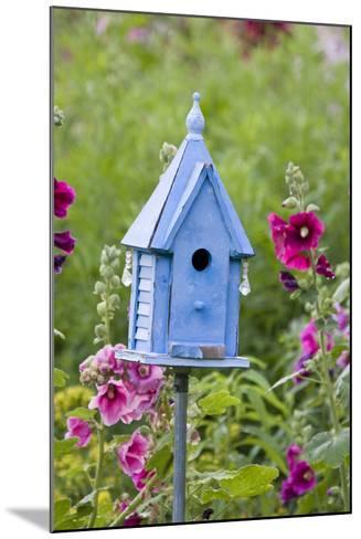 Blue Birdhouse Near Hollyhocks. Marion, Illinois, Usa-Richard ans Susan Day-Mounted Photographic Print