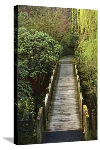 Bridge, Crystal Springs Rhododendron Garden, Portland, Oregon, Usa-Michel Hersen-Stretched Canvas Print