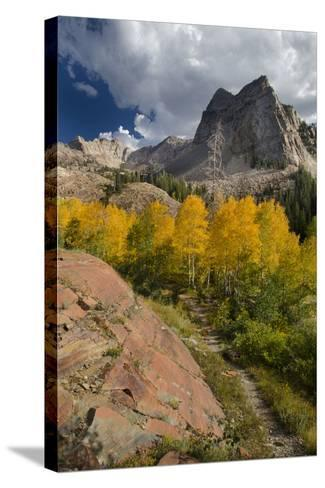 Lake Blanche Trail in Fall Foliage, Sundial Peak, Utah-Howie Garber-Stretched Canvas Print