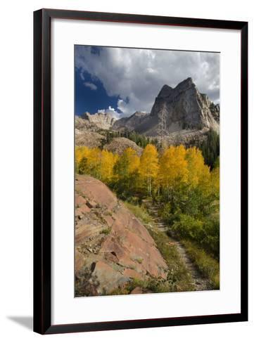 Lake Blanche Trail in Fall Foliage, Sundial Peak, Utah-Howie Garber-Framed Art Print