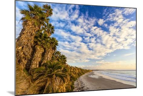 The Golden California Coastline at Swami's Beach in Encinitas, Ca-Andrew Shoemaker-Mounted Photographic Print
