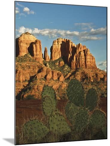 Cathedral Rock at Sunset from Secret Canyon, Sedona, Arizona, Usa-Michel Hersen-Mounted Photographic Print