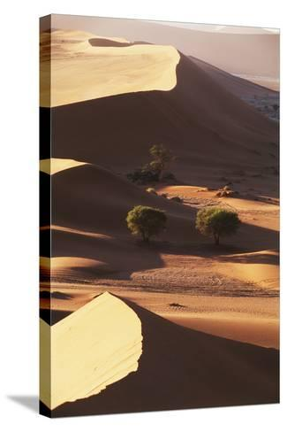 Namibia, Sesriem and Sossusvlei, Sand Dunes Desert at Namib NP-Gavriel Jecan-Stretched Canvas Print