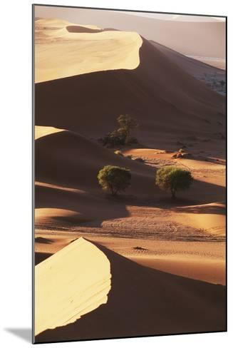 Namibia, Sesriem and Sossusvlei, Sand Dunes Desert at Namib NP-Gavriel Jecan-Mounted Photographic Print
