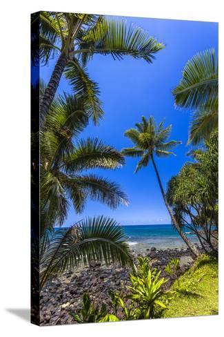 Tropical Coastline of Princeville, Hi-Andrew Shoemaker-Stretched Canvas Print