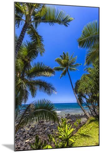 Tropical Coastline of Princeville, Hi-Andrew Shoemaker-Mounted Photographic Print