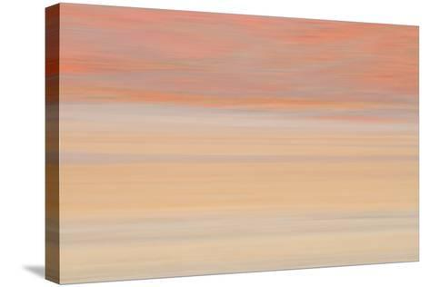 Africa, Namibia. Abstract of Heat Distorting Grassy Plain-Jaynes Gallery-Stretched Canvas Print