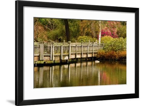 Bridge, Crystal Springs Lake, Rhododendron Garden, Portland, Oregon-Michel Hersen-Framed Art Print
