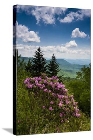 Cowee Mountain Overlook, Blue Ridge Parkway, North Carolina-Howie Garber-Stretched Canvas Print