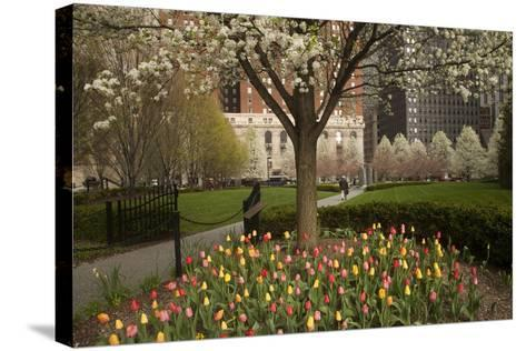 Trees and Tulips in Blloom in Mellon Green, Pittsburgh, Pa-Dave Bartruff-Stretched Canvas Print