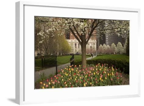 Trees and Tulips in Blloom in Mellon Green, Pittsburgh, Pa-Dave Bartruff-Framed Art Print