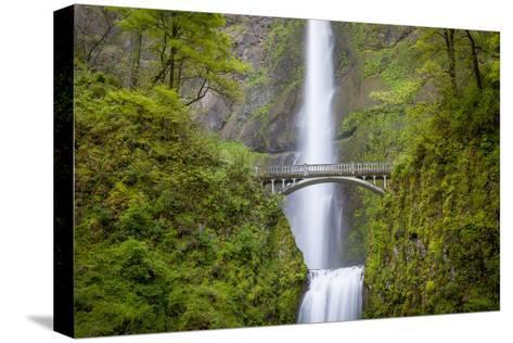 Multnomah Falls in the Columbia River Gorge Near Portland, Oregon, Usa-Brian Jannsen-Stretched Canvas Print