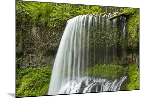 Middle North Falls, Silver Falls State Park, Oregon, Usa-Michel Hersen-Mounted Photographic Print