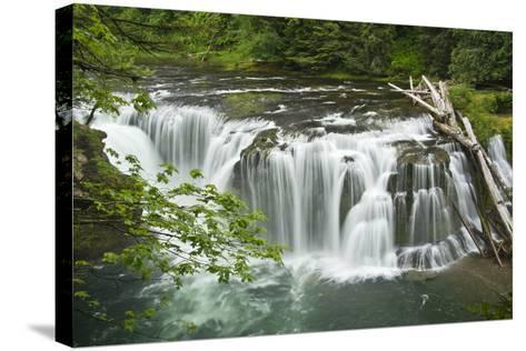 Lower Lewis Falls, Lewis River, Cougar, Washington, Usa-Michel Hersen-Stretched Canvas Print