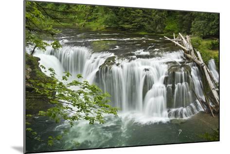 Lower Lewis Falls, Lewis River, Cougar, Washington, Usa-Michel Hersen-Mounted Photographic Print