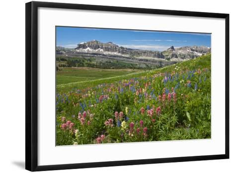 Alaska Basin Wildflower Meadow, Caribou -Targhee Nf, WYoming-Howie Garber-Framed Art Print