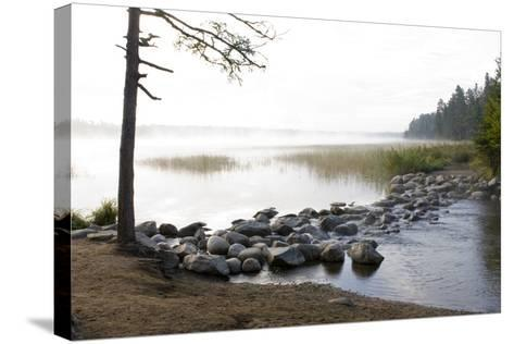 USA, Minnesota, Itasca State Park, Mississippi Headwaters-Peter Hawkins-Stretched Canvas Print