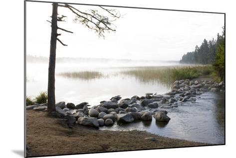 USA, Minnesota, Itasca State Park, Mississippi Headwaters-Peter Hawkins-Mounted Photographic Print