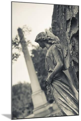 USA, Virginia, Richmond, Hollywood Cemetery, Monuments-Walter Bibikow-Mounted Photographic Print