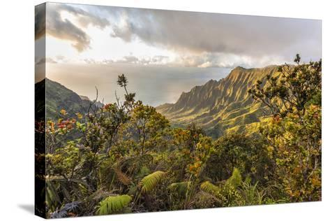 Overlooking the Kalalau Valley Right before Sunset-Andrew Shoemaker-Stretched Canvas Print