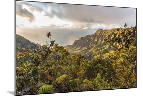 Overlooking the Kalalau Valley Right before Sunset-Andrew Shoemaker-Mounted Photographic Print