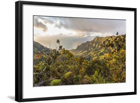 Overlooking the Kalalau Valley Right before Sunset-Andrew Shoemaker-Framed Art Print