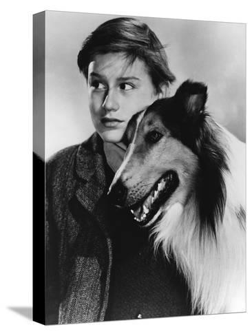 Lassie Come Home--Stretched Canvas Print