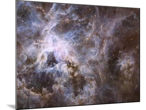 Widefield View of the Tarantula Nebula--Mounted Photographic Print