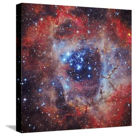 The Rosette Nebula--Stretched Canvas Print