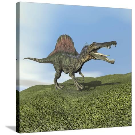 Spinosaurus Dinosaur--Stretched Canvas Print