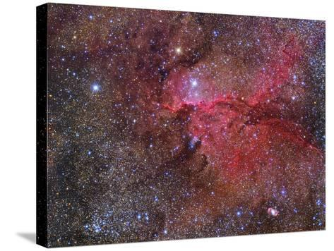 Ngc 6188 Emission Nebula in the Constellation Ara--Stretched Canvas Print