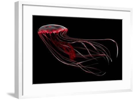 A Bioluminescent Red Jellyfish--Framed Art Print