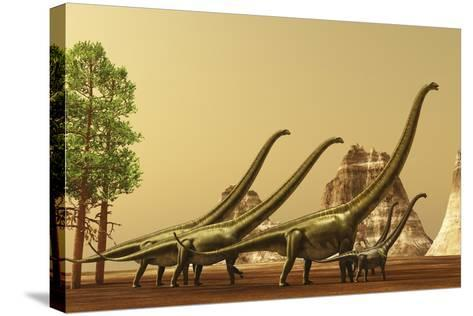 A Herd of Mamenchisaurus Dinosaurs Migrate to Better Feeding Ground--Stretched Canvas Print