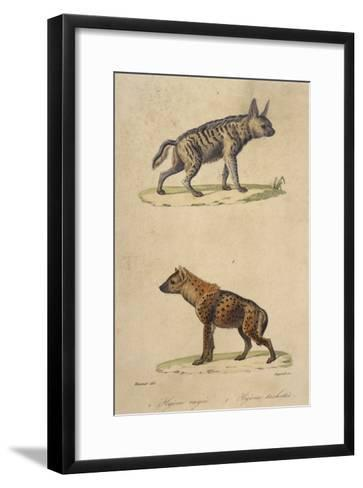 Striped and Spotted Hyena--Framed Art Print