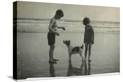 Two Children on Beach with Dog--Stretched Canvas Print