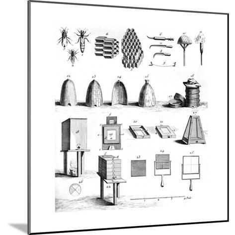 Diderot Hives--Mounted Giclee Print