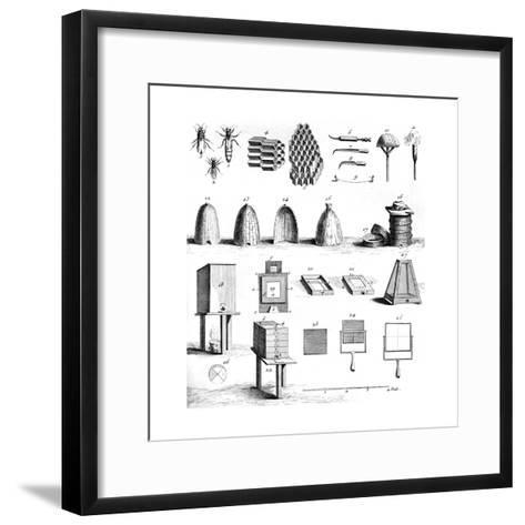 Diderot Hives--Framed Art Print