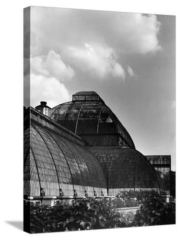 Kew Gardens Palm House--Stretched Canvas Print