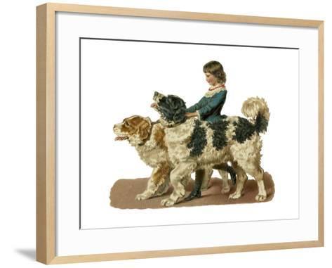 Newfoundland Scrap--Framed Art Print