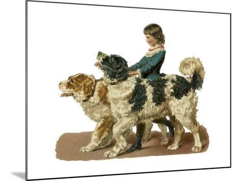 Newfoundland Scrap--Mounted Giclee Print