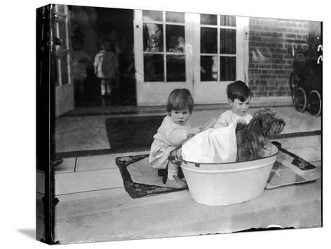 Bathing the Dog--Stretched Canvas Print