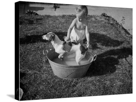 Toddler Giving Dog a Bath in the Garden--Stretched Canvas Print