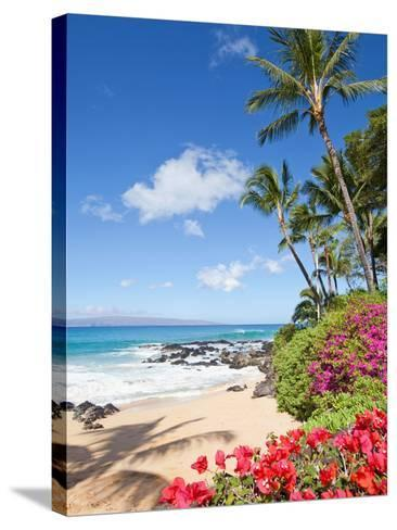 Tropical Beach-M Swiet Productions-Stretched Canvas Print