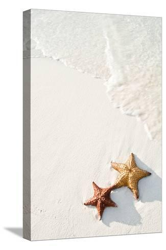 Starfish on Tropical Beach-Mehmed Zelkovic-Stretched Canvas Print
