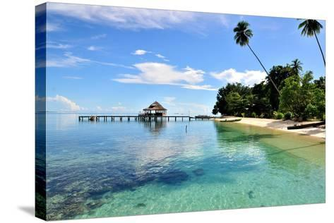 Ora Beach Moluccas Indonesia-Barry Kusuma-Stretched Canvas Print