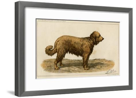 Brie Shepherd Dog at 1863 Paris Dog Show--Framed Art Print