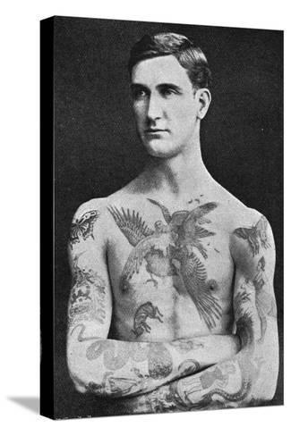Tattooed Masterpiece by Mr. Sutherland Macdonald of Jermyn St--Stretched Canvas Print