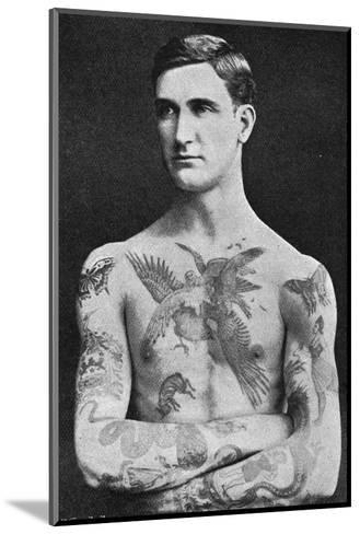 Tattooed Masterpiece by Mr. Sutherland Macdonald of Jermyn St--Mounted Giclee Print