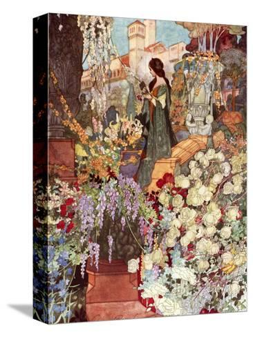 The Sensitive Plant, Robinson-Charles Robinson-Stretched Canvas Print