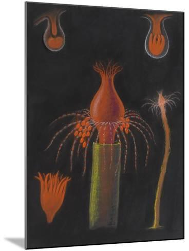 Hydrozoan-Philip Henry Gosse-Mounted Giclee Print